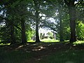 Take me to some shady bower ......... - geograph.org.uk - 186905.jpg