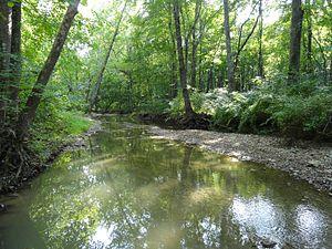 Tenmile Creek (Maryland) - Tenmile Creek near Black Hill Regional Park