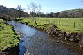 The Afon Aeron downstream near Capel Betws Lleucu - geograph.org.uk - 713598.jpg