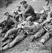 The British Army in Italy 1943 NA10071