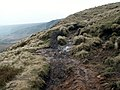 The Pennine Way - geograph.org.uk - 375724.jpg