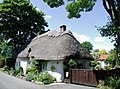 The Thatch, Brigsley - geograph.org.uk - 873385.jpg