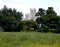 The meadow in the Franciscan gardens, looking towards Canterbury Cathedral - geograph.org.uk - 866806.jpg