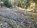 The remains of Mangan-ji temple.JPG