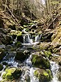Third Volt Falls, Fundy National Park, NB.jpg