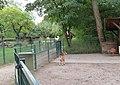 Tiergehege - Familien-Naherholungsgebiet.jpg