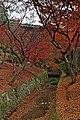 Tofuku-ji (4585145151).jpg
