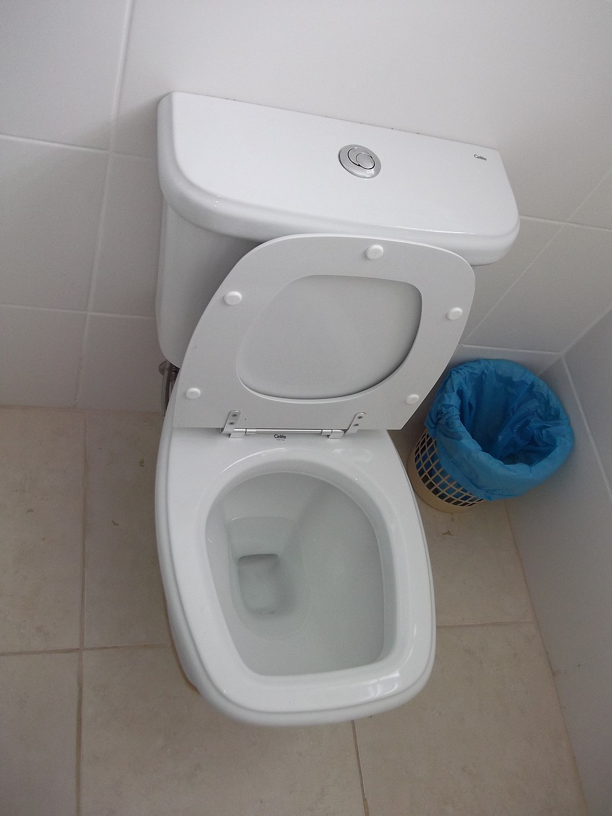 What does the toilet look like
