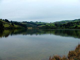 Tomahawk Lagoon lake in New Zealand