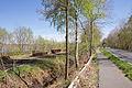 Totes Moor im LSG Schneerener Geest vor Neustadt am Rübenberg IMG 6818.jpg