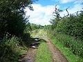 Track Near Orgreave - geograph.org.uk - 889151.jpg