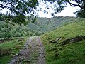 Track from Sykeside Campsite - geograph.org.uk - 536282.jpg