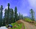 Track towards Ganga Choti Sudhan Gali AJK Northern Pakistan.jpg