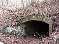 Trail 2 PB250223.jpg