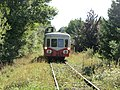 Train Touristique de Puisaye-Forterre - 4.JPG