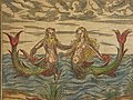 Triton and a sea-nymph (1600).jpg