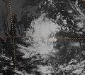 Tropical Depression Nine-E 1983.jpg