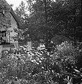Twee vrouwen in de tuin, rechts waarschijnlijk de moeder van van de Poll, Bestanddeelnr 191-1119.jpg