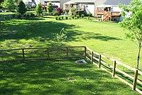 Typical suburban backyard.jpg