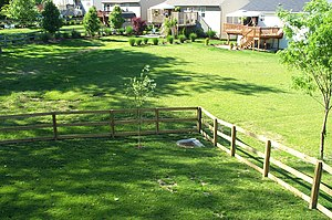 Yard (land) - A subdivision backyard (American English)