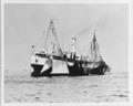 USS Panaman - 19-N-1114.tiff