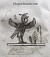 Ulisse aldrovandi, monstrorum historia, per nicola tebaldini, bologna 1642, 072 arpia (geroglifico).jpg
