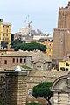 Uma gaivota(?) Italiana (8561282360).jpg