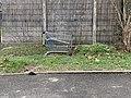 Un caddie abandonné en bordure de la route de Genève (Beynost).jpg