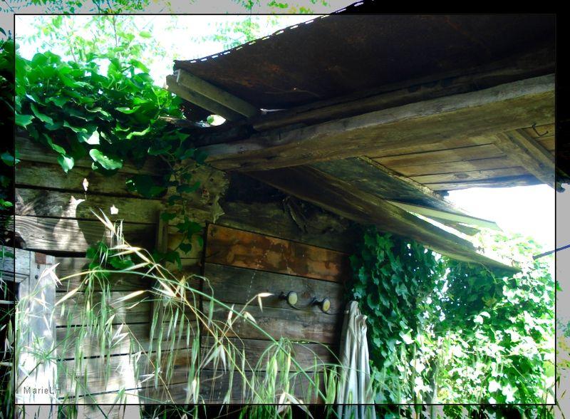 File:Un jardin abandonné.jpg