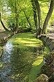 Un ruisseau alimentant le lac des Minimes.JPG