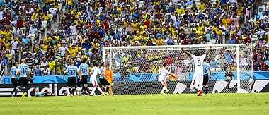 Uruguay - Costa Rica FIFA World Cup 2014 (1).jpg