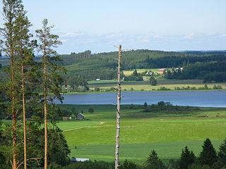 Saari, Finland former municipality of Finland, now part of Parikkala