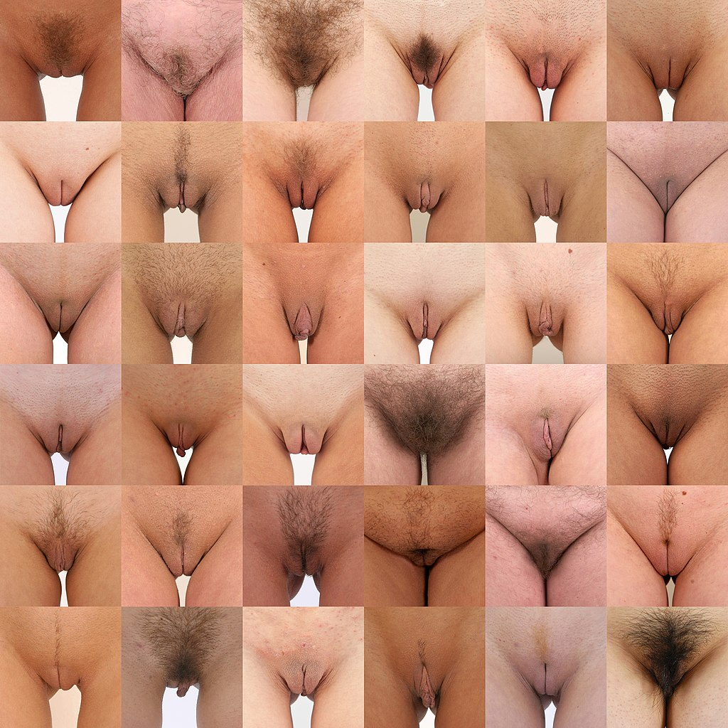 Can hairy young shaved global pussy you keep