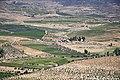 Vale da Vilariça - Portugal (17024579555).jpg