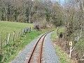 Vale of Rheidol Railway near Troed-rhiw-felen - geograph.org.uk - 769561.jpg