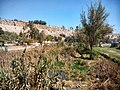 Vallenar, Chile - panoramio (13).jpg
