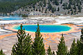 View on Grand Prismatic Spring.jpg