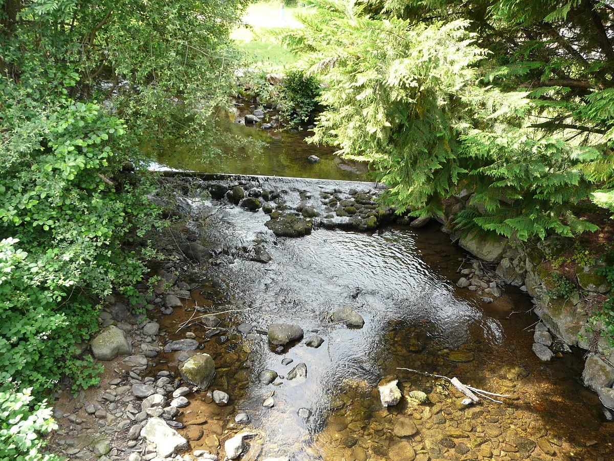 Violon ruisseau wikip dia - Compagnie des produits pour le jardin ...