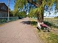 Volodymyrivka, Dnipropetrovsk Oblast, Ukraine, 53812 - panoramio (3).jpg