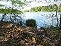 Vyžlovský rybník (027).jpg