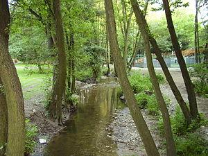 Vydrica (river) - Vydrica near Železná studienka, part of the Bratislava Forest Park in Bratislava