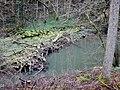Würm bei Tiefenbronn - panoramio (1).jpg