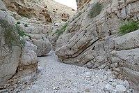 Wadi-Makukh-671.jpg