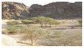 Wadi Jinn (6171382923).jpg
