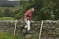 Wall stile on Tarnbrook footpath - geograph.org.uk - 1409373.jpg