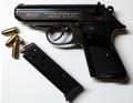 WaltherPPK-E.png