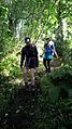 Wanderung im Wald.jpg