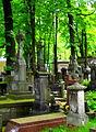 Warszawa, Cmentarz PowązkowskiSDC11701.JPG