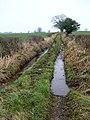 Waterlogged bridleway to Laversdale - geograph.org.uk - 693853.jpg