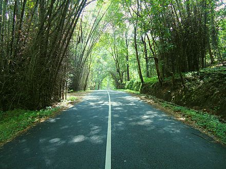 Way to Vazhachal From Athirappilly Way to Vazhachal From Athirappilly.JPG